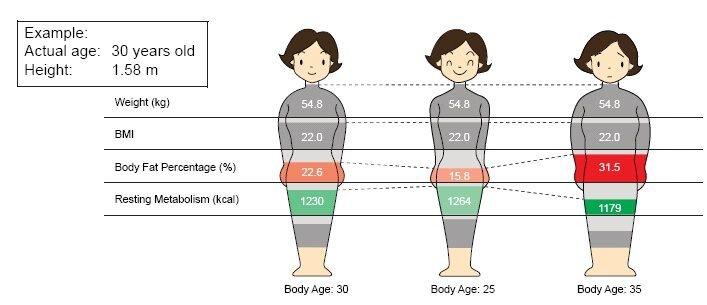 body-fat%.jpg
